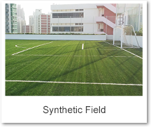 Synthetic Field
